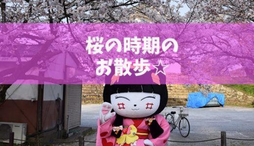桜の時期のお散歩☆